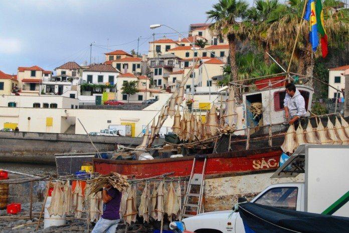 Fischerboot im Hafen von Câmera de Lobos