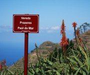 Traumhafter Wanderweg auf Madeira