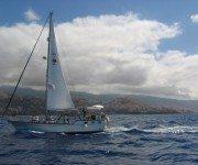 Segeln auf Madeira