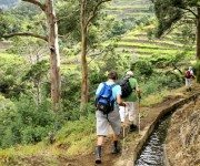 Wanderung ins Tal von Machico